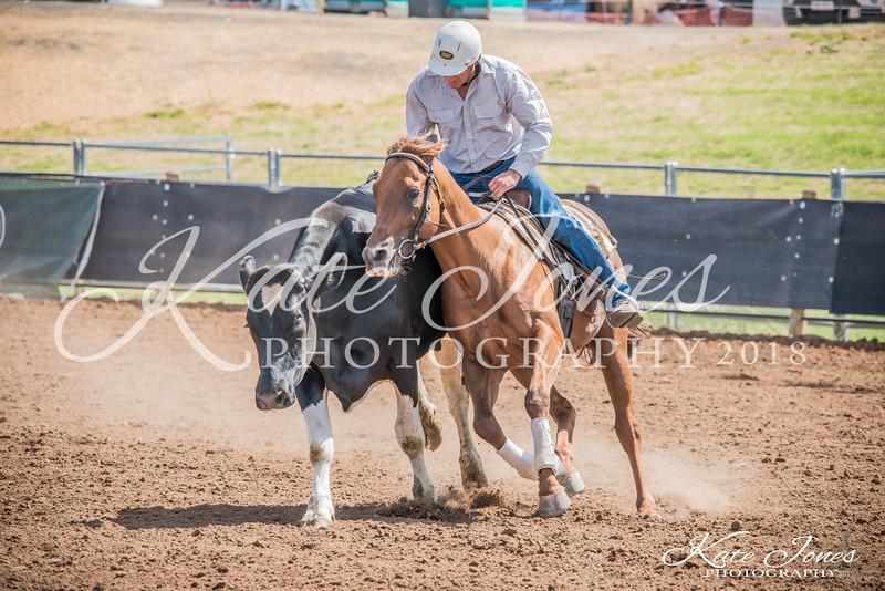 ASHN Stallions-0057