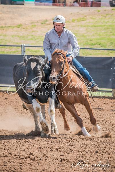 ASHN Stallions-0055