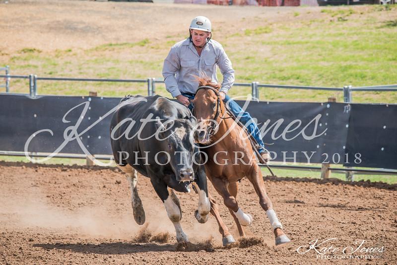 ASHN Stallions-0054