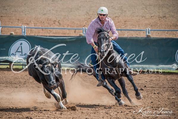 ASHN Stallions-0034
