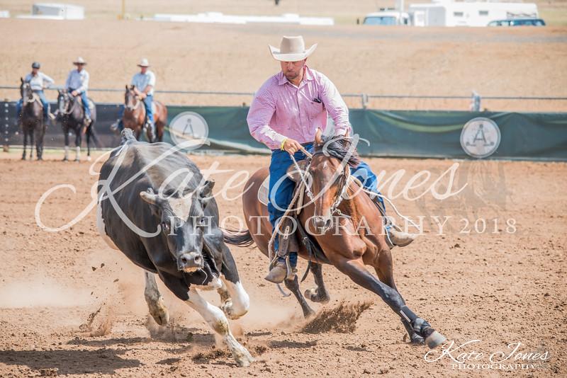 ASHN Stallions-0004