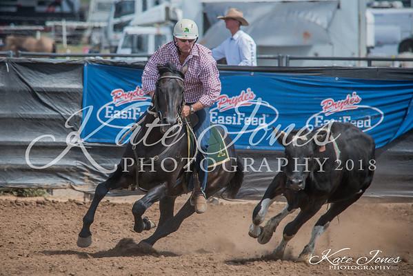 ASHN Stallions-0031
