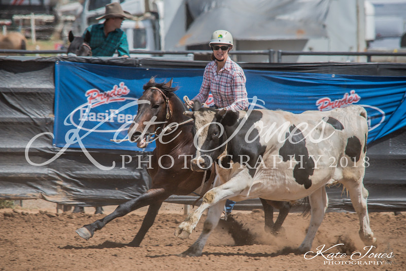 ASHN Stallions-0018