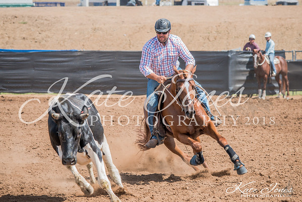 ASHN Stallions-0009