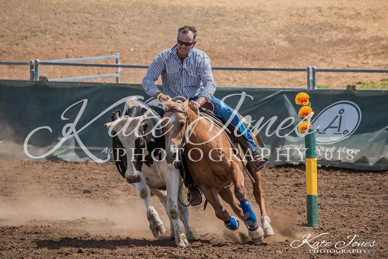 ASHN Stallions-0076