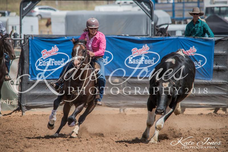 ASHN Stallions-0017