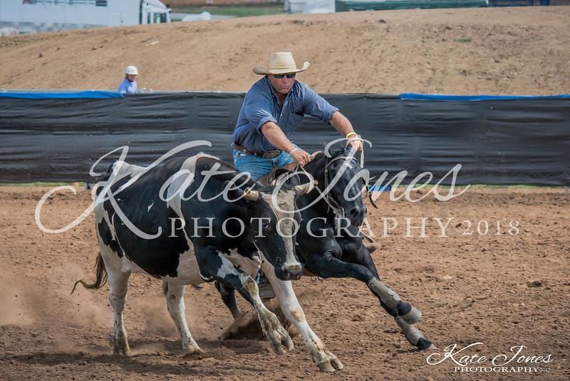ASHN Stallions-0035