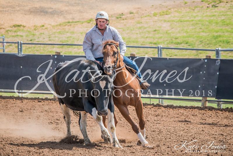 ASHN Stallions-0053