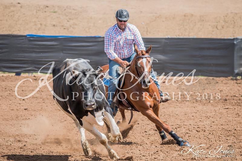 ASHN Stallions-0008