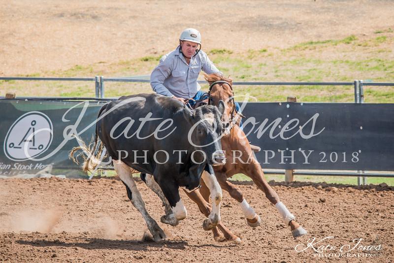 ASHN Stallions-0051