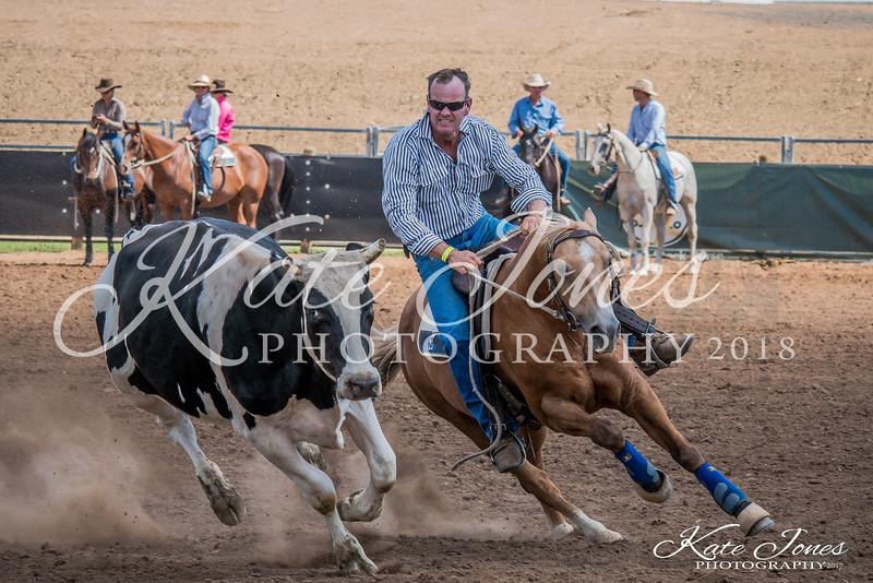 ASHN Stallions-0066