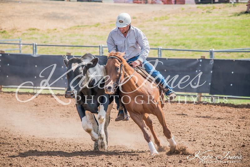 ASHN Stallions-0056