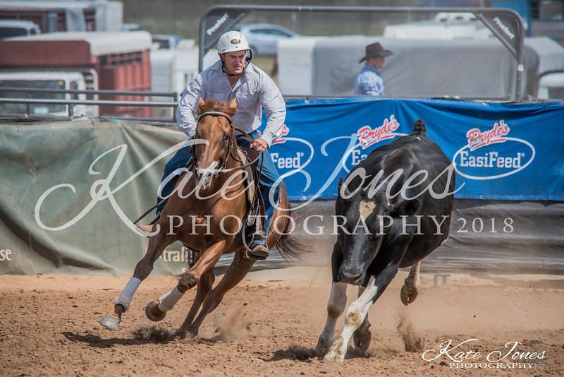 ASHN Stallions-0048