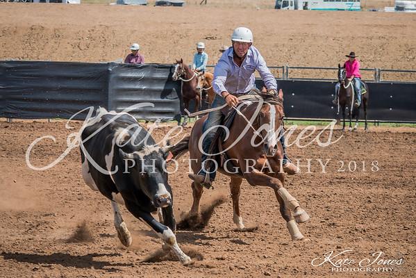 ASHN Stallions-0002