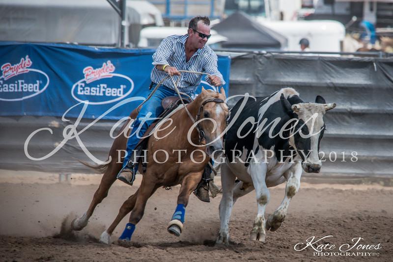 ASHN Stallions-0072