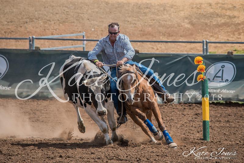 ASHN Stallions-0075