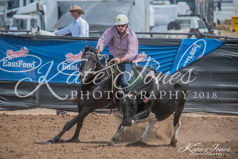 ASHN Stallions-0030