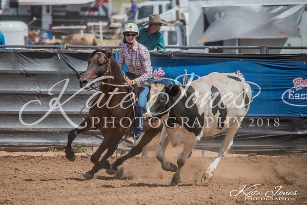 ASHN Stallions-0019