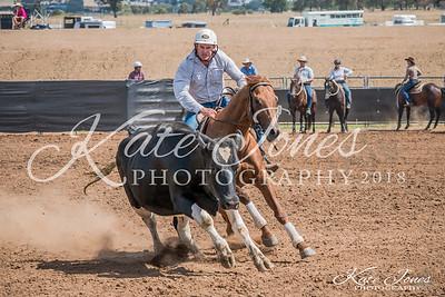 ASHN Stallions-0043