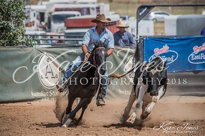 ASHN Stallions-0012