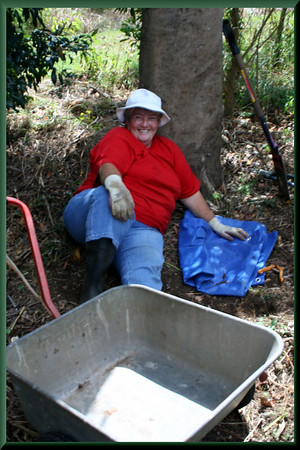 Woman at work.  Beverley Fairley happily exhausted after a day's work removing rogue tubers from the forest.  Photographed April 2007 - © 2007 Lesley Bray Photography - All Rights Reserved.