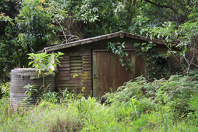 This is a shed on the same property,  The weird thing is, in my first photo the door on this shed was closed.  I turned my back to take other photos and then this last one of the shed.  Didn't realise until we looked at the photos at home that the shed door had opened slightly.