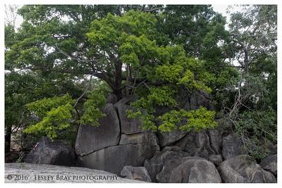 Granite Gorge Nature Park