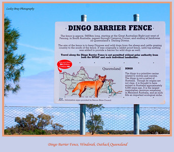 The sign says it all ! Dingo Barrier Fence, on the Diamantina Developmental Road east of Windorah in outback Queensland, Australia.  Photographed August 2010 - © 2010 Lesley Bray Photography