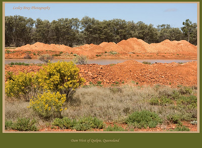 We were amazed by the redness of the soil west of Quilpie on the Diamantina Developmental Road in outback Queensland, Australia  Photographed August 2010 - © 2010 Lesley Bray Photography