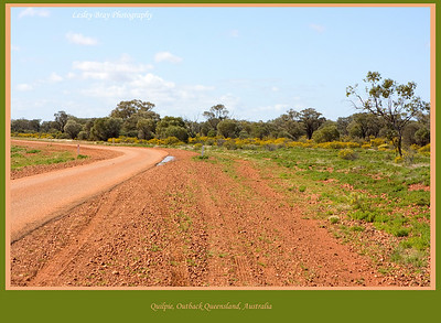 And the road goes on !  As soon as we left Quilpie we noticed how green and fertile the land was after the recent heavy rain and floods. Diamantina Developmental Road, outback Queensland, Australia.  Photographed August 2010 - © 2010 Lesley Bray Photography