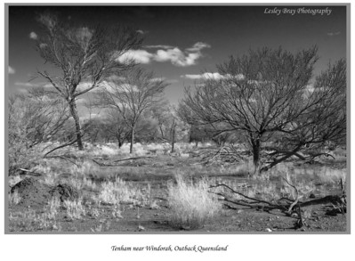 Black & white version of Tenham, in the desert on the Diamantina Developmental Road, outback Queensland, Australia.  Photographed August 2010 - © 2010 Lesley Bray Photography