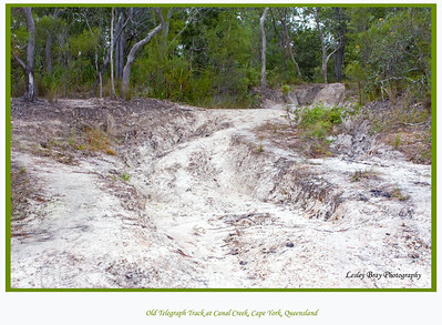 Part of the Old Telegraph Track at Canal Creek, Cape York Peninsular, Queensland, Australia.   Photographed June 2010 - © Lesley Bray Photography