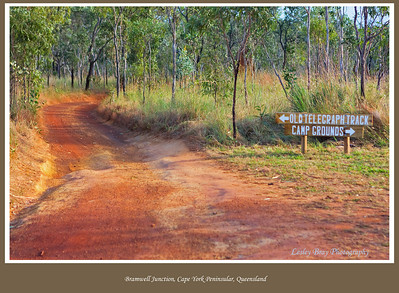Bramwell Junction is the starting point of the Old Telegraph Track.  It is here you make the decision whether to stick to the Bypass Road or brave the OTL Track. Cape York Peninsular, Queensland, Australia.   Photographed June 2010 - © Lesley Bray Photography
