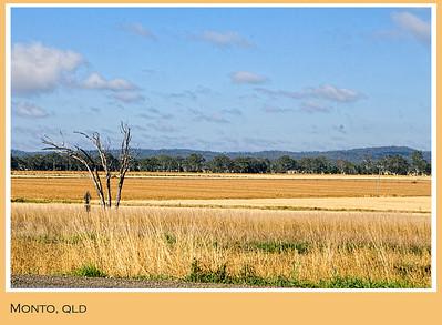 Fields outside Monto