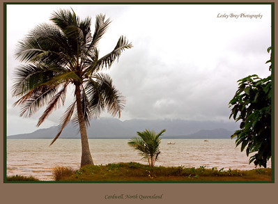 The sun doesn't always shine at Cardwell, north Queensland, Australia.  Hinchinbrook Island is in the background.   Photographed July 2010 - © Lesley Bray Photography