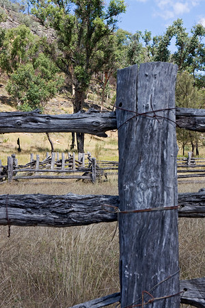 Part of the fence post and railing on the old stockyards adjacent to the slab hut on the Carnarvon National Park Road en route to Mt Moffatt.  April 2010