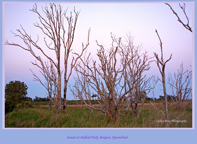 End of the day, sunset at Bargara - this is the view from the caravan.  We were camped at Ballard Park, on Bargara Road, near Bundaberg, Queensland, Australia.  Photographed August 2010 - © Lesley Bray Photography