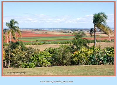 Sloping Hummock now known as The Hummock was named by Matthew Flinders in 1799 and is the only hill in Bundaberg, Queensland, Australia.  It was a volcano and responsible for the volcanic rock found on the beaches in this area, now overlooks the cane fields.  Photographed August 2010 - © Lesley Bray Photography