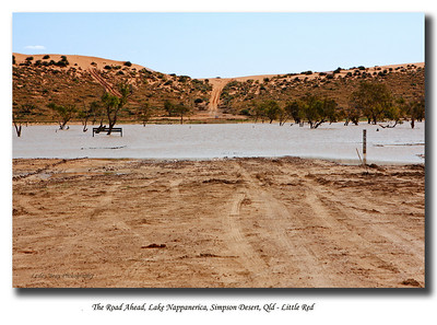 This is Lake Nappanerica, about 35ks west of Birdsville; the lake signals the beginning of the QAA Line and the Simpson Desert.  Lake Nappanerica overflowed across the track, forcing us to take a detour around the southern end of the lake.   The detour meets up with the QAA Line which you can see heading west over the part of Nappanerica Dune known as 'Little Red'.  Further north along Nappanerica Dune is the famous 'Big Red' which every red-blooded 4WD'er must conquer before leaving Birdsville. We didn't even make it over 'Little Red' today, at this very point we discovered we had a wheel bearing problem so we turned and headed back to Birdsville.  We returned two days later.  Photographed August 2010