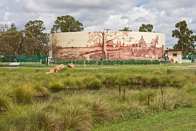 Water Tank Mural - photo taken from Back Creek Parkland, Millmerran, Queensland