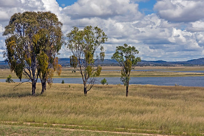 Lake Leslie Photographed February 2010 - © 2010 Lesley Bray Photography - All Rights Reserved.  Do not remove my signature from this image. Sharing only with credit please.