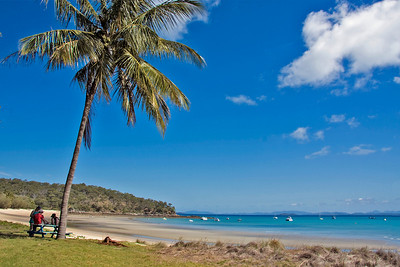 Relaxing under a palm tree on Fisherman's Beach