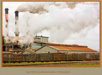 Cane season at the Sugar Mill at Victoria Plantation near Ingham, north Queensland, Australia.   Photographed July 2010 - © Lesley Bray Photography