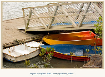 Dinghies moored near Dungeness Wharf, North Lucinda, Queensland, Australia.   Photographed July 2010 - © Lesley Bray Photography