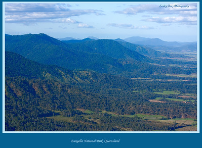 View of the Clarke Range from Sky Window Circuit at Eungella National Park, Queensland, Australia.  Photographed August 2010 - © Lesley Bray Photography