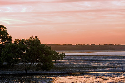 End of day at Point O'Halloran - nothing much to look at except mudflats - for some reason the tide is always low when I am there.