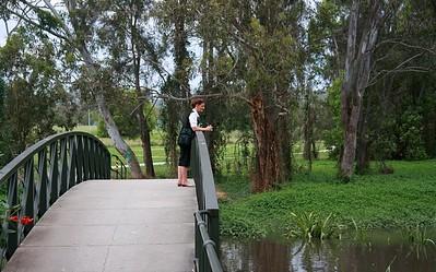 Bulimba Creek