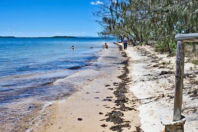 Flinders' Landing on Norfolk Beach, Coochiemudlo Island  November 2008