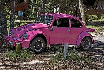 Pink VW seen at Coochiemudlo Island  Poster Edges  November 2008