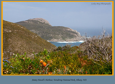 Looking over Jimmy Newell's Harbour on the Albany coastline of the Torndirrup National Park, Western Australia.  The harbour is on part of the Great Southern Ocean.  Photographed October 2011 - © Lesley Bray - All Rights Reserved.